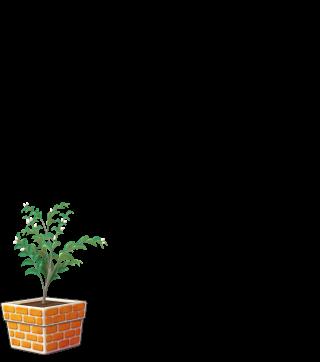 DORAKENオレンジの植木鉢(LV5)