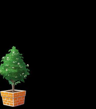 DORAKENオレンジの植木鉢(LV6)
