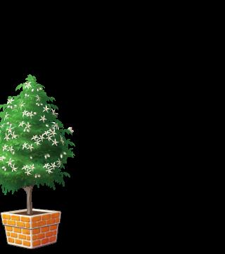 DORAKENオレンジの植木鉢(LV7)