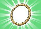 DORAKENコレクトアイテム(053豹柄の腕輪)